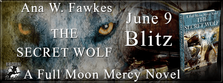 The Secret Wolf Banner-Blitz-450 x 169