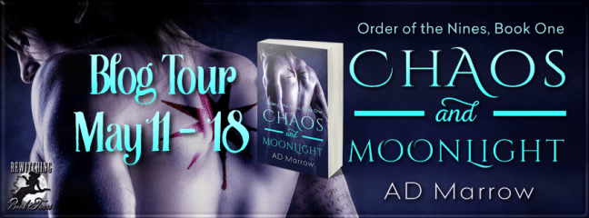 Chaos and Moonlight Banner 851 x 315