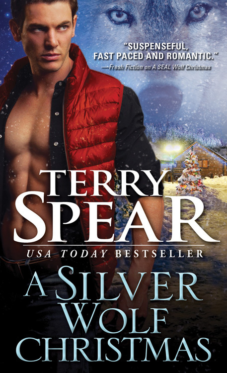A Silver Wolf Christmas Book Cover