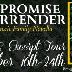 Excerpt Tour: The Promise of Surrender (The MacKenzie Family #13.5) by Liliana Hart