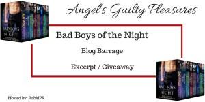BadBoysoftheNightBoxSet-Banner-angelsgp
