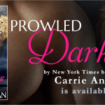 Release Day: Prowled Darkness (Dante's Circle, #7) by Carrie Ann Ryan ~ Excerpt