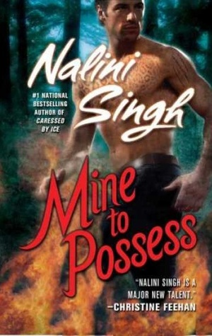 Mine to Possess Book Cover
