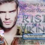 Rise of a Viking (The MacLomain Series: Viking Ancestors' Kin #1) by Sky Purington {Tour} ~ Excerpt