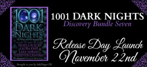 1001-dark-nights-bundle-7-rdl-banner