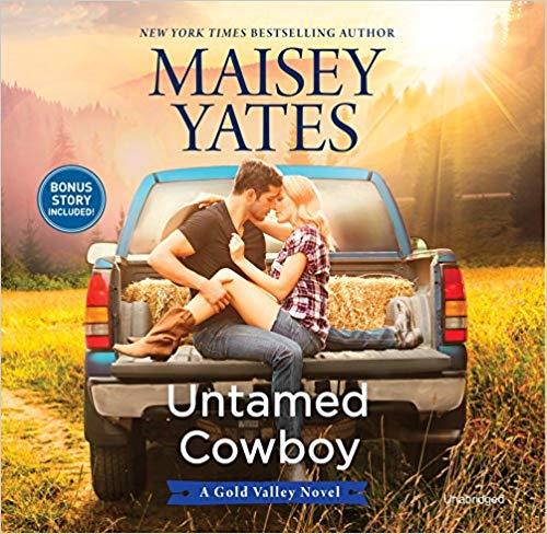 Untamed Cowboy Book Cover