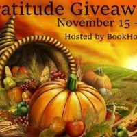 Gratitude Giveaway ~ Nov. 15th - Nov. 30th