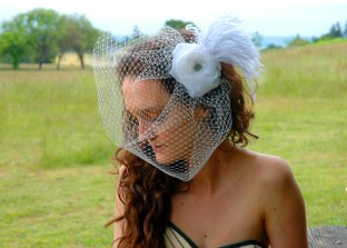 Bridal Bird Cage Veil 2011