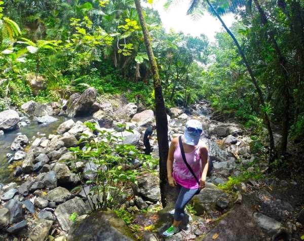 Hiking in El Yunque Rainforest Puerto Rico