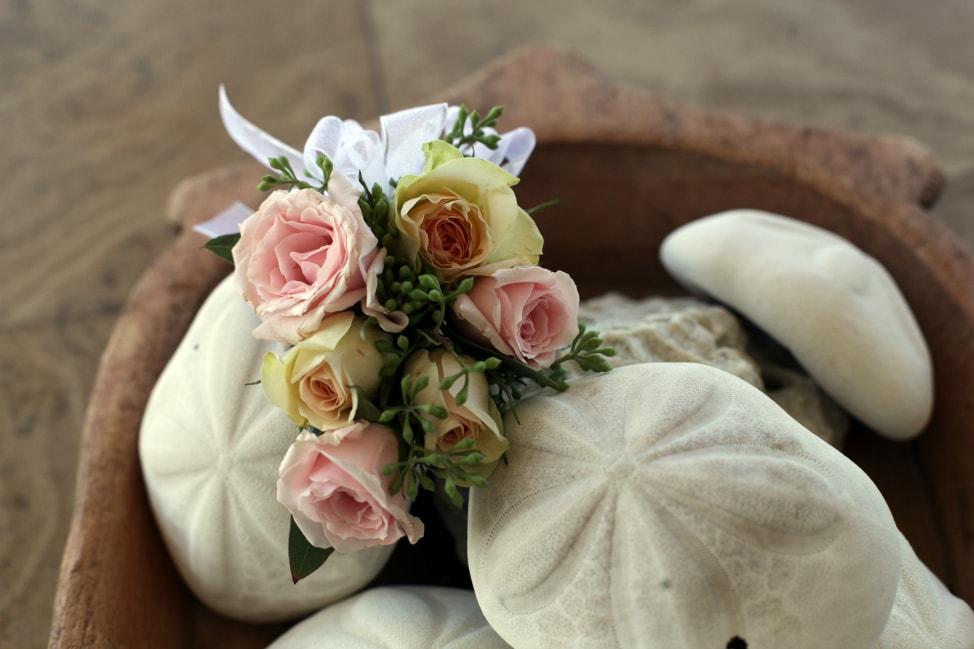 pro wedding photos