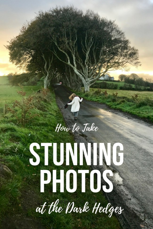 How to Take Stunning Photos at the Dark Hedges - Northern Ireland. Photography tips from a professional traveler.