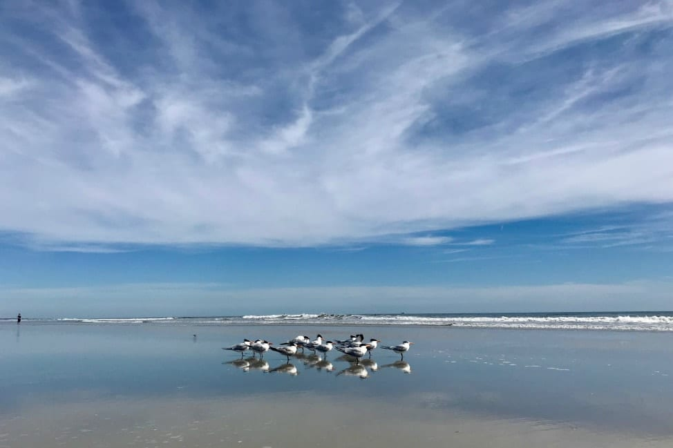 Reflections from the Road - Jacksonville Beach Florida-min