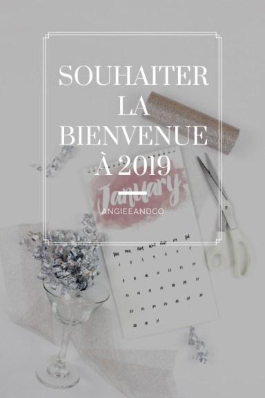 Epingle Pinterest pour mon article sur la nouvelle année 2019
