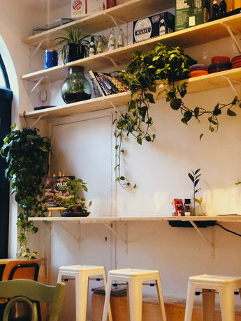 La beauté de ce café pleins de plantes