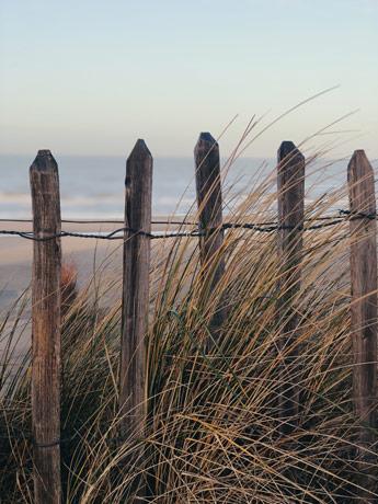 Vue sur la plage de Zaandvort