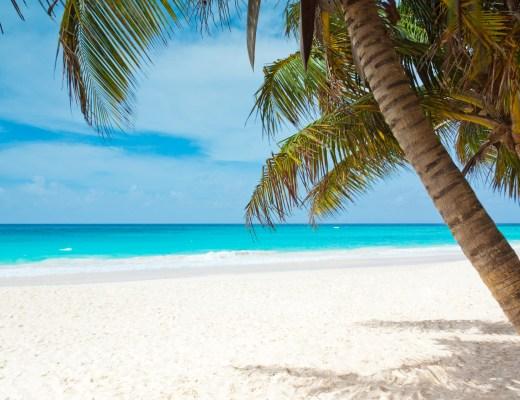 tropical-paradise