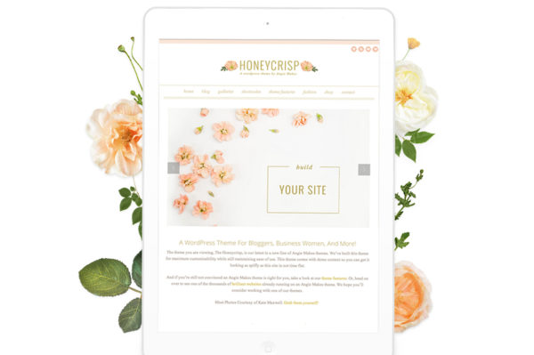 pretty wordpress theme 2014
