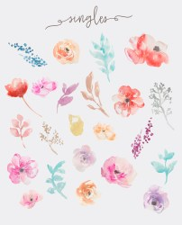 watercolor flower clip flowers clipart fresca floral little angiemakes watercolour angie makes painting creativemarket 1160 1431 drawing