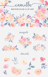 clip watercolor flower designs flowers camilla floral clipart angiemakes paintings included pattern