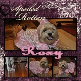 My Memories Suite Layout - Roxy Halloween