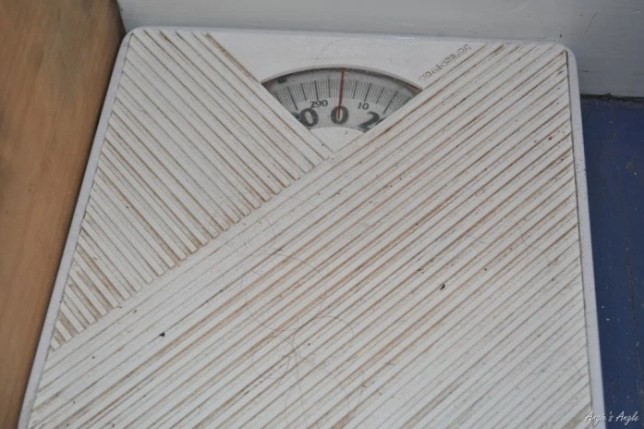 Our Old Scale - Angie's Angle