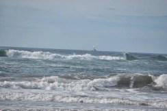 Tuesday Walk & Beach at Devil's Churn (72)