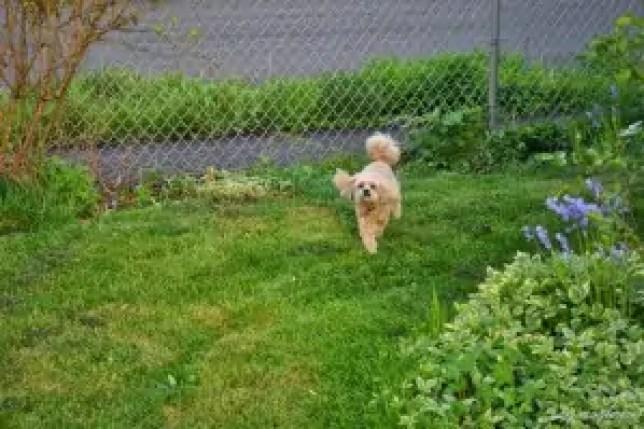 Active Outdoor Roxy (1)