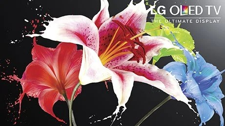 Start your Holiday Wish List with LG OLED TV from Best Buy  #HintingSeason #OLEDatBestBuy