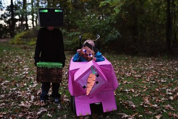 Project 52 Minecraft-Costumes - Favorite