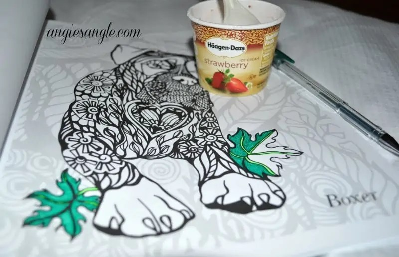 Dogs Art Coloring Book - Boxer and Ice Cream