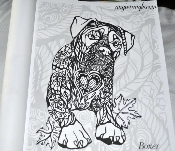 Dogs Art Coloring Book - Boxer