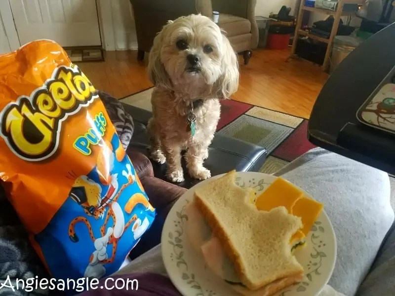 catch-the-moment-366-week-42-day-289-cheese-please-mom