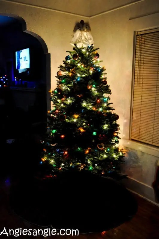 Catch the Moment 366 Week 50 - Day 348 - 2016 Christmas Tree