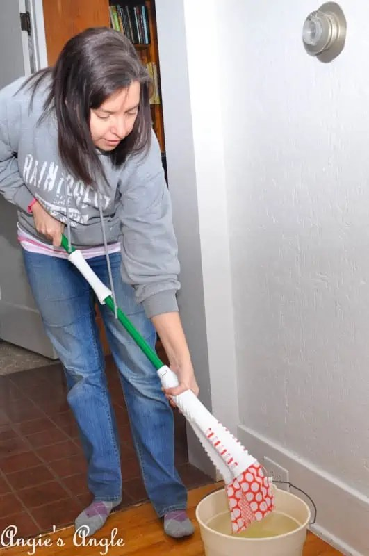 Spring Cleaning with Libman-4