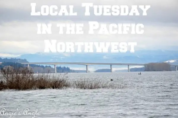 Local Tuesday in the Pacific Northwest
