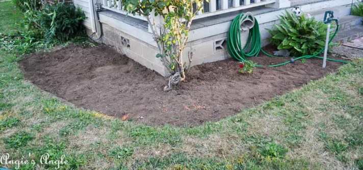 2017 Catch the Moment 365 Week 30 - Day 204 - Front Garden Bed