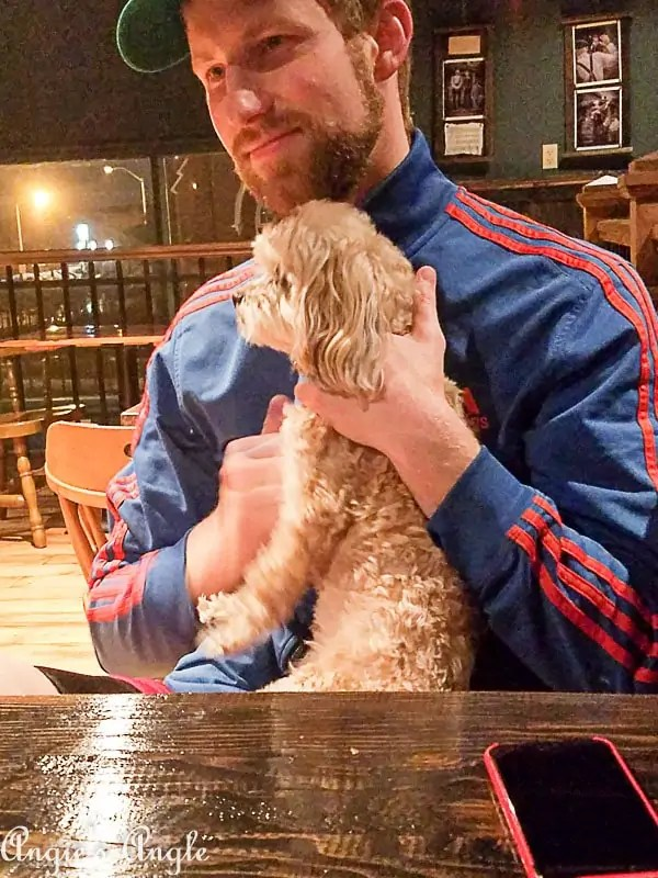 2018 Catch the Moment 365 Week 5 - Day 31 - Spoiled Roxy at Tap Union Brewing