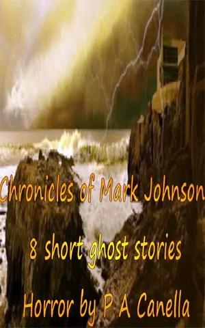 Chronicles of Mark Johnson1 Review: Chronicles of Mark Johnson