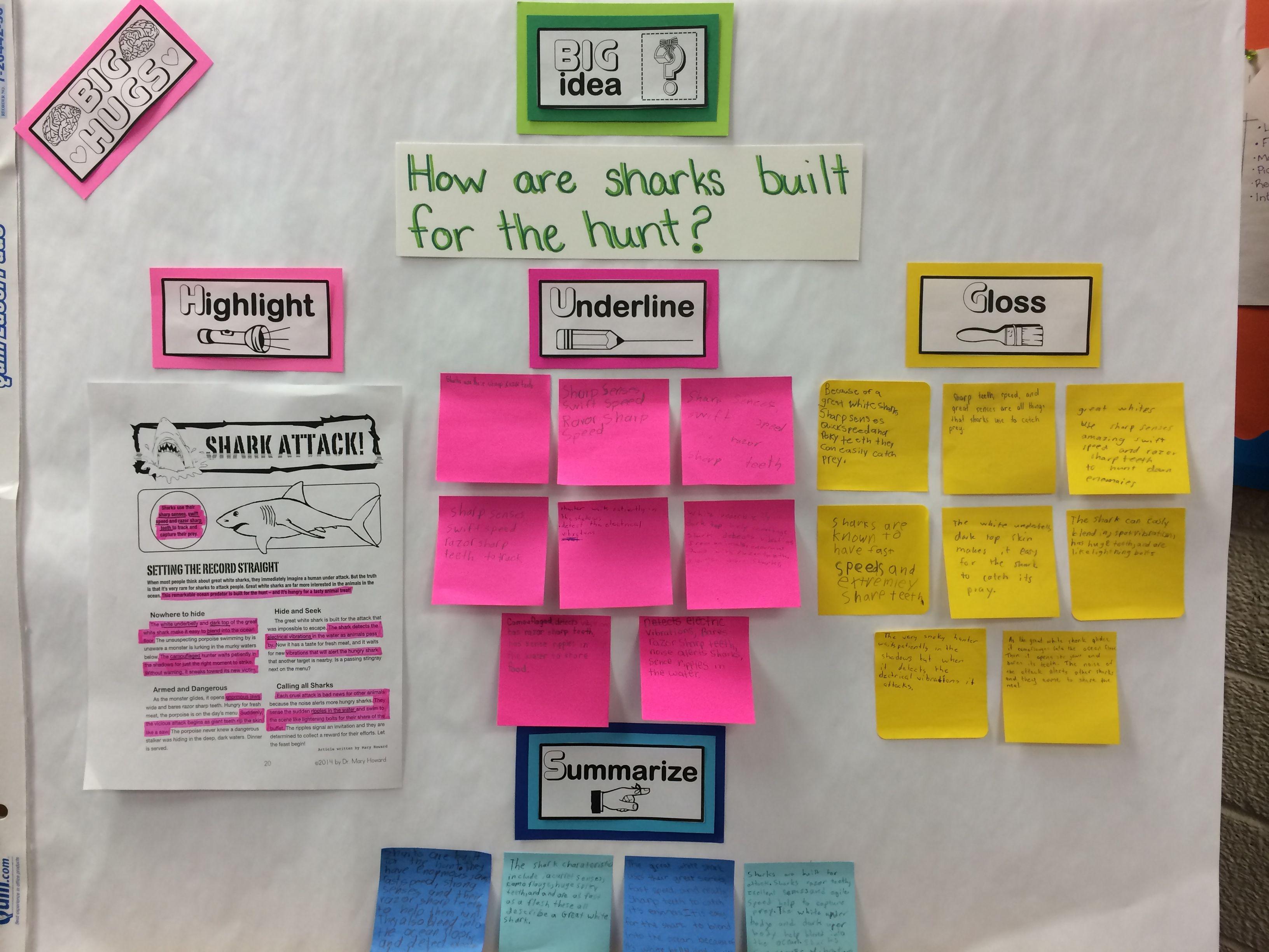 Iowa Teaching Standards