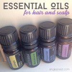 Essential Oils For Scalp And Hair Angie S Nest