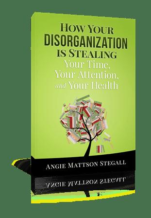 Disorganization Cover 3-D new 2015 small
