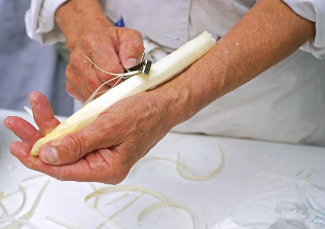 Weisser Spargel, white asparagus is being cleaned by peeling