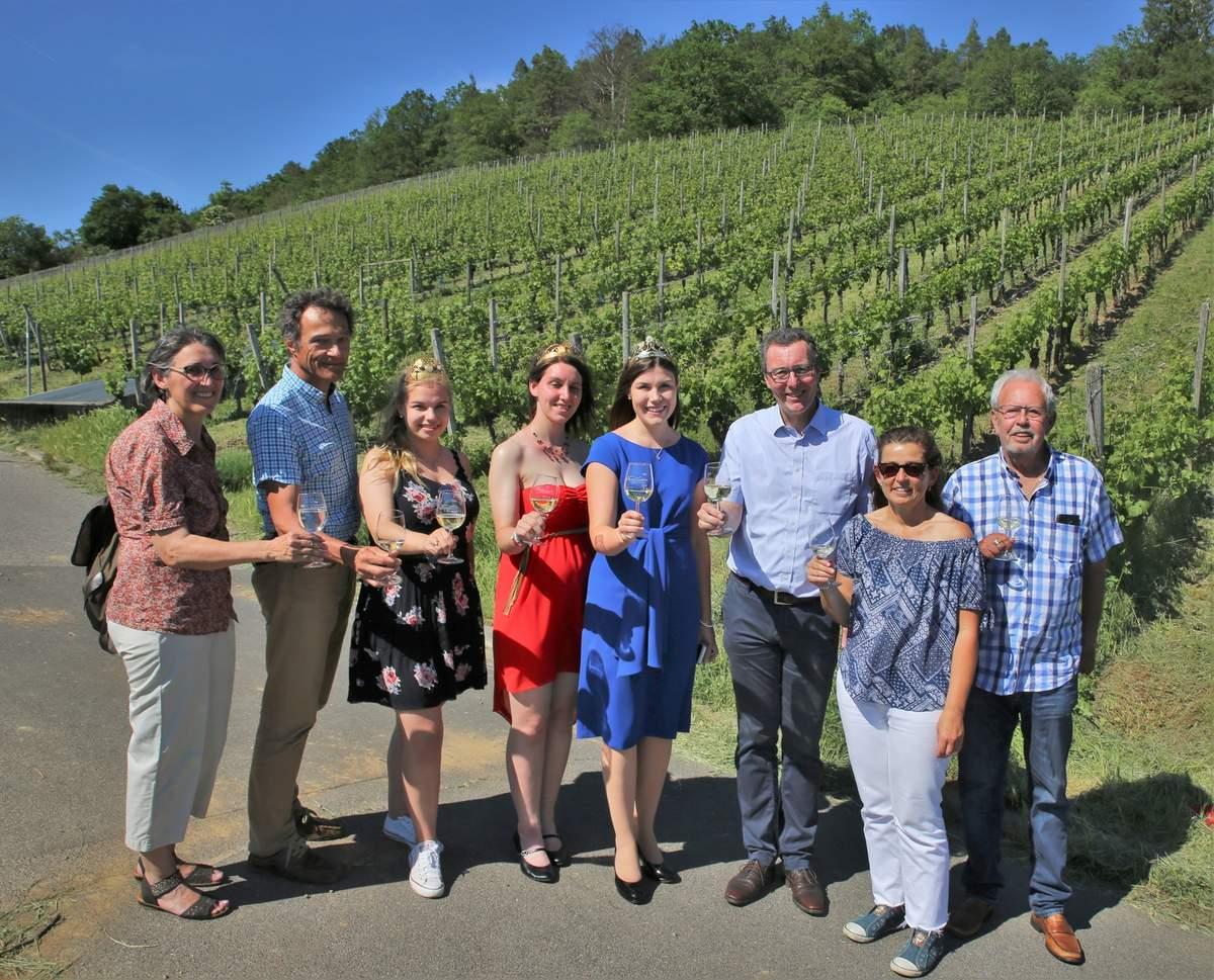 Veitshöchheim Weinwanderung