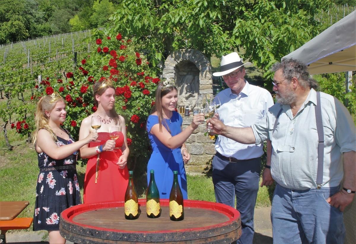 Veitshoechheim Weinwanderung, Winewalk