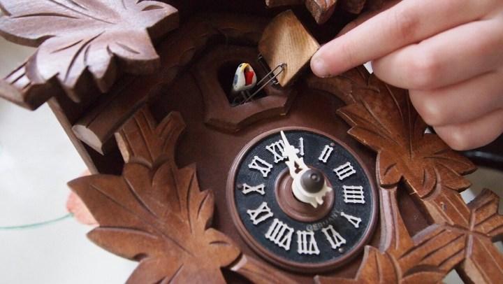 Cuckoo clock, Kuckucksuhr