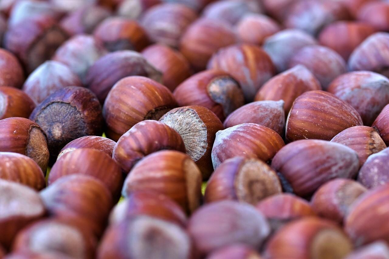 Hazelnuts, Haselnuesse