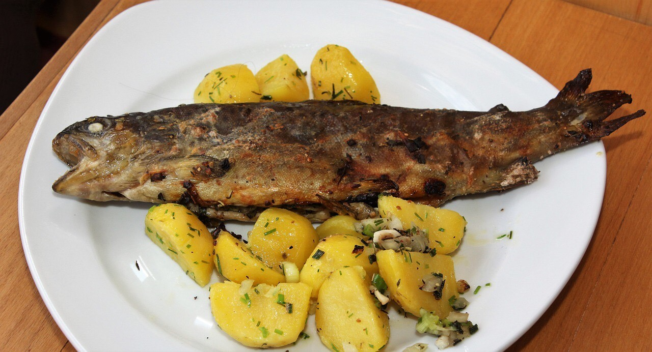 Grilled Mackerel served on a plate with potatoes