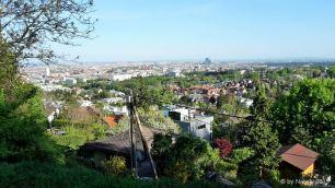 view over Vienna