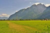 halfandhalf-mountain (1)