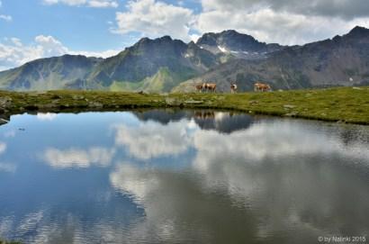 halfandhalf-mountain (2)